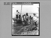 view Followers of Peter's trade emptying nets on shore of Galilee (S.W.). 10843 Photonegative 1910 digital asset number 1