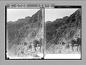 view [Landscape in Palestine.] 10941 Photonegative 1910 digital asset number 1