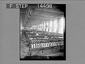 view Winding for the warp in an up-to-date plain silk weaving mill, Paterson, N.J. 11445 photonegative 1913 digital asset number 1
