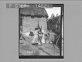 view Women pounding corn for bread in the yard of a Barranquilla home. 11519 photonegative 1906 digital asset number 1