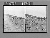 view [Laborers.] 12423 Photonegative digital asset number 1