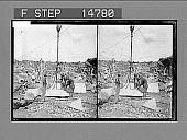 view [Laborers.] 12486 Photonegative 1900 digital asset number 1