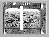 view Proud men of the North who 'fought like shining angels' on Flanders Field [on copied print mount], No. 14419 : stereo photonegative digital asset: Proud men of the North who 'fought like shining angels' on Flanders Field [on copied print mount], No. 14419 : stereo photonegative.