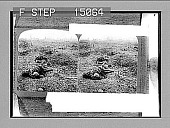 """view Proud men of the North who """"fought like shining angels on Flanders Field"""". [Active no. 14419 : stereo photonegative.] digital asset: Proud men of the North who """"fought like shining angels on Flanders Field"""". [Active no. 14419 : stereo photonegative.]"""