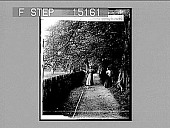 view Approach to Dryburgh Abbey, Dryburgh, Scotland. Copyright 1896 by Strohmeyer & Wyman. [on negative] [Active no. 20046 : non-stereo photonegative,] 1896 digital asset number 1