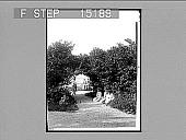 view Beautiful Luna Island, Niagara [caption on loose glass cover]. [Active no. 20158 : half-stereo photonegative.] digital asset: Beautiful Luna Island, Niagara [caption on loose glass cover]. [Active no. 20158 : half-stereo photonegative.]