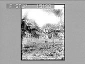 view A Small Farmer's Tobacco patch, Province of Havana, Cuba. Copyright 1899 by Strohmeyer & Wyman. [on negative.] [Caption no. 20183 : half-stereo photonegative,] digital asset: A Small Farmer's Tobacco patch, Province of Havana, Cuba. Copyright 1899 by Strohmeyer & Wyman. [on negative.] [Caption no. 20183 : half-stereo photonegative,] 1899.