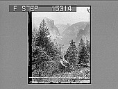 view Yosemite Valley from Inspiration Point, California, U.S.A. [on negative] [Active no. 20558 : non-stereo photonegative.] digital asset number 1