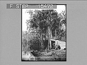 view Camp near Sunday Bluff, Ocklawaha River, Florida, U.S.A. Copyright 1891 by Geo. Barker. [on negative] [Active no. 21052 : non-stereo photonegative,] digital asset: Camp near Sunday Bluff, Ocklawaha River, Florida, U.S.A. Copyright 1891 by Geo. Barker. [on negative] [Active no. 21052 : non-stereo photonegative,] 1891.