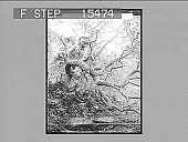 view The Wizard Oak and Spring, Fort George Island, U.S.A. Copyright 1891 by Geo. Barker. [on negative] [Active no. 21057 : non-stereo photonegative,] digital asset: The Wizard Oak and Spring, Fort George Island, U.S.A. Copyright 1891 by Geo. Barker. [on negative] [Active no. 21057 : non-stereo photonegative,] 1891,