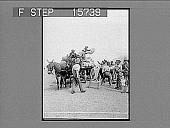 view [Military scene.] 22280 Photonegative digital asset: [Military scene.] 22280 Photonegative.