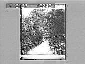 view --- of Lanterns, Nara, Japan. Copyright 1896 by Strohmeyer & Wyman. [On negative.] 23361 Photonegative digital asset: --- of Lanterns, Nara, Japan. Copyright 1896 by Strohmeyer & Wyman. [On negative.] 23361 Photonegative 1896.