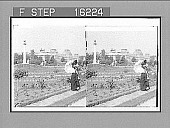 """view """"From the famous Tuileries (east) to the Ministry of Finance, Paris, France. Series of 1901 by Underwood & Underwood."""" [on negative]. Active no. 23756 : stereo photonegative, 1901 digital asset number 1"""