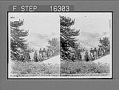 view [Tourist group in mountainous terrain.] 23949 Photonegative digital asset: [Tourist group in mountainous terrain.] 23949 Photonegative 1905.