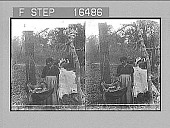 view An Indian Cradle. Copyright 1900 by Underwood & Underwood. [on negative] [Active no. 24411 : stereo photonegative,] digital asset: An Indian Cradle. Copyright 1900 by Underwood & Underwood. [on negative] [Active no. 24411 : stereo photonegative,] 1900.