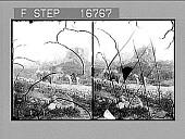 view [Ruins.] 26621 Photonegative digital asset number 1