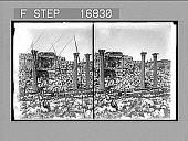 view [Ruins.] 26849 Photonegative digital asset number 1