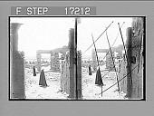 view [Ruins.] 28608 Photonegative digital asset number 1