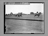 view [Outdoor polo competition.] 1727 photonegative digital asset: [Outdoor polo competition.] 1727 photonegative.