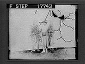 view [Society Flower Show] 1930 photonegative digital asset: [Society Flower Show] 1930 photonegative 1926