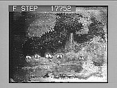 view [No image.] 1950 photonegative digital asset: [No image.] 1950 photonegative.