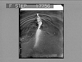 """view New York City: Miss Clarabelle Barrett, swimming teacher of the James Monroe High School, illustrating her """"crawl"""" swimming stroke, with which she hopes to paddle herself across the mischievous English Channel. 6/28/26. [No. 1954 Silver gelatin glass p... digital asset: New York City: Miss Clarabelle Barrett, swimming teacher of the James Monroe High School, illustrating her """"crawl"""" swimming stroke, with which she hopes to paddle herself across the mischievous English Channel. 6/28/26. [No. 1954 Silver gelatin glass photonegative, non-stereo] 1926."""