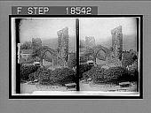 view [Ruins.] 216 Interpositive digital asset number 1