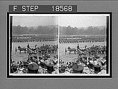view H.M. Queen Alexandra reviewing Britain's Colonial Troops, Horse Guards Parade. [Active No. 262 : stereoscopic interpositive,] digital asset: H.M. Queen Alexandra reviewing Britain's Colonial Troops, Horse Guards Parade. [Active No. 262 : stereoscopic interpositive,] 1902.