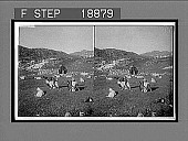 view Milking the goats at lonely Tarjebudal saeter, away up among the Haukeli Mountains. 728 Interpositive digital asset: Milking the goats at lonely Tarjebudal saeter, away up among the Haukeli Mountains. 728 Interpositive 1905