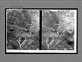 view Minnehaha (Laughing Water) Falls, in Watkins Glen. 5481 Interpositive digital asset: Minnehaha (Laughing Water) Falls, in Watkins Glen. 5481 Interpositive.