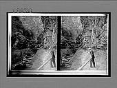 "view ""Artist's Dream""--one of the grandest scenes in Watkins Glen. 5483 Interpositive digital asset: ""Artist's Dream""--one of the grandest scenes in Watkins Glen. 5483 Interpositive."