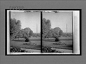 view Inspiring outlook from the President's south windows to the lofty monument. 5613 interpositive digital asset: Inspiring outlook from the President's south windows to the lofty monument. 5613 interpositive.