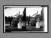 view General Robert E. Lee's old home and grounds, Arlington, Va. [Active no. 5654 : stereo interpositive.] digital asset: General Robert E. Lee's old home and grounds, Arlington, Va. [Active no. 5654 : stereo interpositive.]