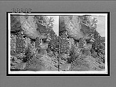 view Home of a vanished race--cliff dwellings in Walnut Canyon. 6153 Interpositive digital asset: Home of a vanished race--cliff dwellings in Walnut Canyon. 6153 Interpositive.