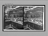 view General view in a great cigar factory (1,000 employees), the largest in Havana. Active no. 6508 : stereo interpositive digital asset: General view in a great cigar factory (1,000 employees), the largest in Havana. Active no. 6508 : stereo interpositive.