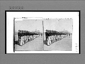 view First company of native Porto Ricans enlisted in the American Colonial Army. [Caption No. 6668 : stereoscopic interpositive.] digital asset: First company of native Porto Ricans enlisted in the American Colonial Army. [Caption No. 6668 : stereoscopic interpositive.]