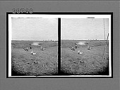 view Hunting on a natural prairie of the West, the typical home of the prairie chicken, Kansas. 6828 Interpositive digital asset: Hunting on a natural prairie of the West, the typical home of the prairie chicken, Kansas. 6828 Interpositive 1902