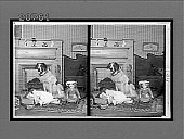 view [Child with large dog in home living room.] 6847 interpositive digital asset: [Child with large dog in home living room.] 6847 interpositive.