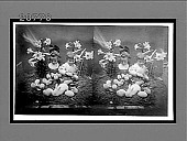 view [Easter. Active no. 6894 : stereo Interpositive.] digital asset: [Easter. Active no. 6894 : stereo Interpositive.]