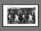 view [Fencers in home living room.] Active no. 7340 : stereo interpositive digital asset: [Fencers in home living room.] Active no. 7340 : stereo interpositive.