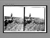 view [Military.] 7568 Interpositive digital asset: [Military.] 7568 Interpositive.