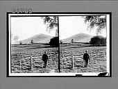 view [Agriculture.] 8306 Interpositive digital asset: [Agriculture.] 8306 Interpositive.