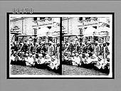 view [Portrait.] 8790 Interpositive digital asset: [Portrait.] 8790 Interpositive.