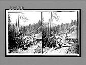 view [Landscape.] 8869 Interpositive digital asset: [Landscape.] 8869 Interpositive 1905.