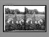 view [Children circling around Maypole in field.] 9418 interpositive digital asset: [Children circling around Maypole in field.] 9418 interpositive 1905.