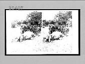 view A big hippopotamus just shot beside Victoria Nyanza. 10558 Interpositive digital asset: A big hippopotamus just shot beside Victoria Nyanza. 10558 Interpositive