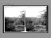 view West from Punchbowl's lower slope, over bowery streets of Honolulu, H.Is. 10689 Interpositive digital asset: West from Punchbowl's lower slope, over bowery streets of Honolulu, H.Is. 10689 Interpositive 1910.