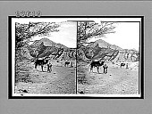 view Bedouins with camels traversing wilderness between Elim and Sinai. The Wanderings of Israel. 10824 Interpositive digital asset: Bedouins with camels traversing wilderness between Elim and Sinai. The Wanderings of Israel. 10824 Interpositive 1910.