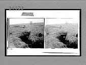view [Military.] 11956 Interpositive digital asset: [Military.] 11956 Interpositive.