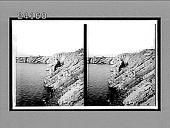view [Seacoast.] 11960 Interpositive digital asset number 1